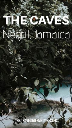 The caves in Negril Jamaica. Views of Jamaica. Jamaican caves. Travel Diaries: Jamaica. What you should explore in Jamaica! #jamaicavacation #jamaica  #HallmarkChannel #sweepstakes @hallmarkchannel Jamaica Vacation, Jamaica Travel, Mexico Travel, Jamaica Beach, Camping Snacks, Caribbean Vacations, Travel Inspiration, Travel Ideas, Travel Tips