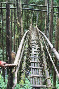 papua rope bridge - Google Search