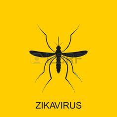 Zika Mosquito Vector. Zika Virus Alert. Zika Virus Concept. Zika.. Royalty Free Cliparts, Vectors, And Stock Illustration. Image 52894156.