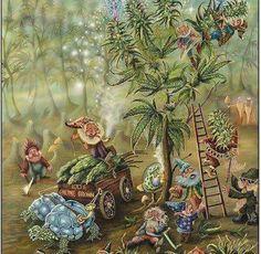 Weed Fairies ✌❤