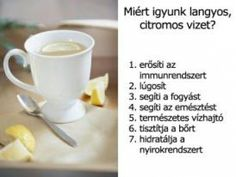 Miért igyunk langyos, citromos vizet? Polo Shirt Women, Polo Shirts, Health And Beauty, Diet, Tableware, Minden, Woman, Amazon, Medium
