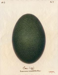 Laszlo Layton, Emu (Egg) 2003