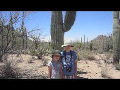 Petroglyph Art at Saguaro National Park