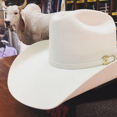 75d9f4dae0 Quieres ganarte una  texana  50x   Ingresa en www.tienda.westpointhats.com  y participa en el  sorteo  westpointhats