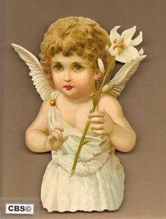 Witte engel met lelie poezieplaatjes 5100