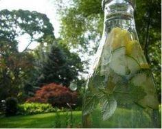 Lemon Mint Cucumber Spritzer Recipe by ZEN_WOMAN via @SparkPeople