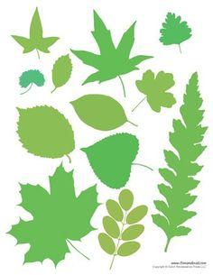 82ae185ff 23 Best Popular leaf shapes in design images   Leaf shapes, Leaf ...