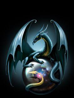 Fantasy of Dragons Types Of Dragons, Cute Dragons, Dragons Den, Magical Creatures, Fantasy Creatures, Mythological Creatures, Fantasy Images, Fantasy Art, Dragon's Lair