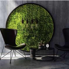 How lovely to have this Moss circle as a feature. Living art. Does anyone have a living wall. We would love to know? @blondiestreehouseinc via : greenandmustard on IG.