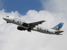 The low-cost carrier will roll out the flights between April and June of this year.