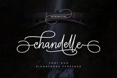 The Chandelle is a handwritten signature script with a natural & stylish flow, perfectly suited for signatures, stationery, logos, typography. Free Characters, Good Resume Examples, Handwritten Script Font, Website Header, Signature Fonts, Vintage Fonts, Free Fonts Download, Font Free, Typography Quotes