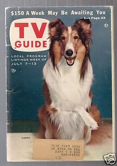 Lassie My world stopped every day when Lassie came on!