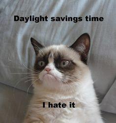 I hate daylight savings time, but I love Grumpy Cat