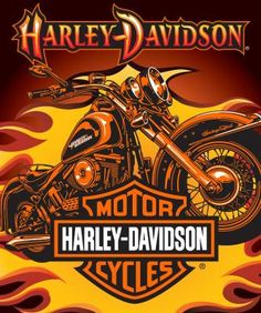 Harley Davidson Logo Absorbent Stoneware Coaster Set