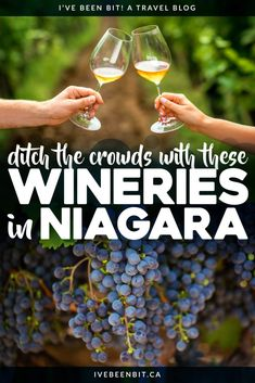 Everyone races to Niagara-on-the-Lake wineries for a taste of Ontario wine country but little do they know the hidden gem they pass along the way. Ditch the crowds with these Niagara wineries in Vineland Ontario! | Wineries in Ontario | Best Wineries in Niagara | Wine Country in Ontario | Winery Ontario | Ontario wineries | Wine Tours Ontario | Ontario Wine Country | Canada Wine Country | Canadian Wine Country | Canadian Wineries | #Ontario #Canada | IveBeenBit.ca