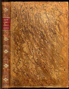 Paluzie y Cantaozella Paleografia