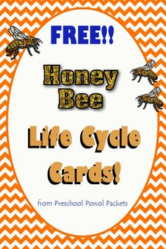 Preschool Powol Packets: {FREE} Honey Bee Life Cycle Cards!