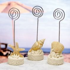 Beach themed wedding favours. It`s as if they were scooped right off the ocean floor - these favours really capture that beachy feel.