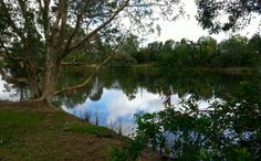 View fro  back fence over Lake by Natalie Hitoun