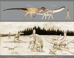 A 2015 paper suggests that the island dwarf brachiosaur Europasaurus became extinct due an invasion of large theropods via a land-bridge. Image by Hyrotrioskjan