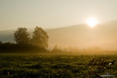 Day Sixty Seven by Julien Perri Photographie, via Flickr  https://www.facebook.com/JPPhotographie