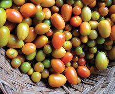 Fruit of the Vine | #OrganicSpaMag #OSMSkinCare