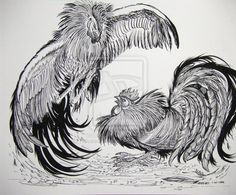 Roosters Fighting Large by HouseofChabrier.deviantart.com on @deviantART