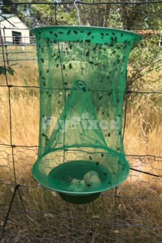 Who needs a fly repellant diy outdoors, when you got FlyFixed! Drastically get rid of flies outside ✅ Flies Outside, Get Rid Of Flies, Black Fly, Fly Repellant, Fly Traps, Outdoor Areas, Bugs, Backyard, Outdoors