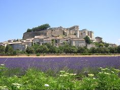 st remy de provence  I need a second trip here....loved it!