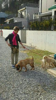 G-Dragon With Gaho & Jolly in Dolcebita