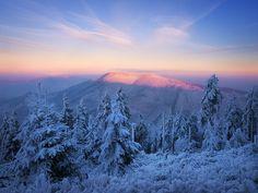 View towards enlightened summit of Smrk mountain in Beskydy Mountain range in the Czech Republic.   www.JanBainar.cz