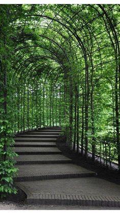 Alnwick Castle, Beautiful Landscapes, Beautiful Gardens, Beautiful Flowers, Beautiful Scenery, Beautiful Pictures, Landscape Architecture, Landscape Design, Canopy Architecture