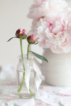 Honeysuckle Cottage, Rose Cottage, Romantic Cottage, Romantic Homes, Very Beautiful Flowers, Pink Geranium, Vase Centerpieces, Table Flowers, Peony Flower