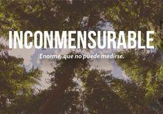 Las 20 palabras más bonitas del español - Imagen 1