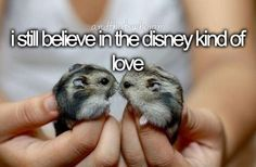 I still believe in the disney kind of love