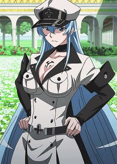 http://www.cosplayhouse.com/images/D/Akame-Ga-Kill-Cosplay-Esdeath-Cosplay-Costume-Version-01-3.jpg
