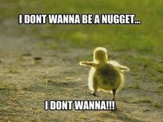 haveurattitude   I don't wanna be a nugget…