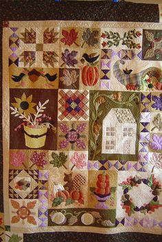 Another beautiful sampler quilt, quilted by Jessica's Quilting Studio