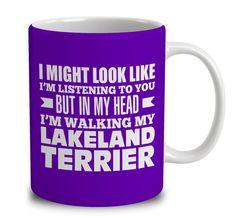 In My Head I'm Walking My Lakeland Terrier