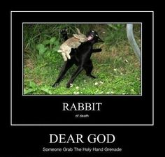 The Killer Rabbit of Caerbannog!  It does exist!