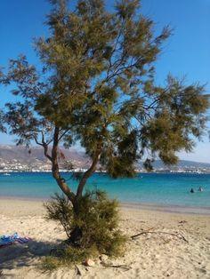 Marchello beach, Paros island Greece