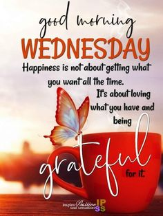 Happiness is not about getting you want all the time good morning wednesday wednesday quotes good morning quotes good morning wednesday good morning images Wednesday Morning Images, Wednesday Morning Greetings, Happy Wednesday Pictures, Blessed Wednesday, Happy Wednesday Quotes, Wednesday Motivation, Morning Greetings Quotes, Wednesday Coffee, Wednesday Wisdom