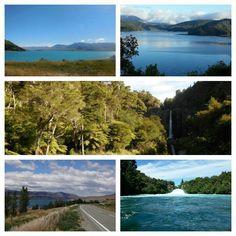 NZ Collage