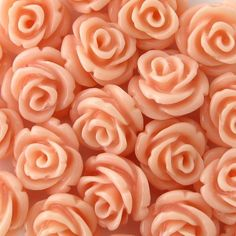 Roses carved in Peach-coloured Coral . Orange Aesthetic, Aesthetic Colors, Flower Aesthetic, Aesthetic Pictures, Color Melon, Orange Color, Peach Orange, Coral Color, Peach Colors