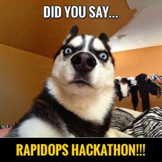 Am I super excited about the hackathon? Yes, I am, aren't you? Oh, common I know your beautiful brain is brimming with great ideas already? #hackAhmedabad #letshack #hackathonInRapidOps