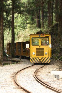 太平山國家森林遊樂區:查看 TripAdvisor 上在台灣宜蘭縣的旅遊景點排名,瀏覽關於太平山國家森林遊樂區的旅客評論和真實旅客照片。
