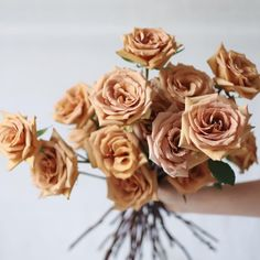 Toffee Roses Are The Flora Trend Everyone Needs To Know About Rose Wedding Bouquet, Rose Bouquet, Wedding Flowers, Flower Bouquets, Beautiful Red Roses, Beautiful Bouquet Of Flowers, Shade Flowers, Types Of Flowers, Rose Flowers