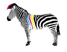 punk-as-cmyk zebra