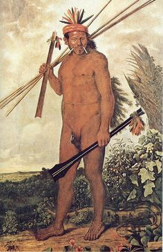 * Tapuia * (by Albert Eckhout). Albert Eckhout, Dutch Republic, Brazil Art, Indigenous Tribes, Native American Tribes, Typography Prints, Natural History, Figurative Art, Love Art