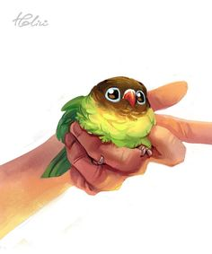 Birb by Holivi on DeviantArt - Cute Kawaii Drawings, Cute Animal Drawings, Bird Drawings, Cool Drawings, Drawing Faces, Horse Drawings, Funny Birds, Cute Birds, Maus Illustration